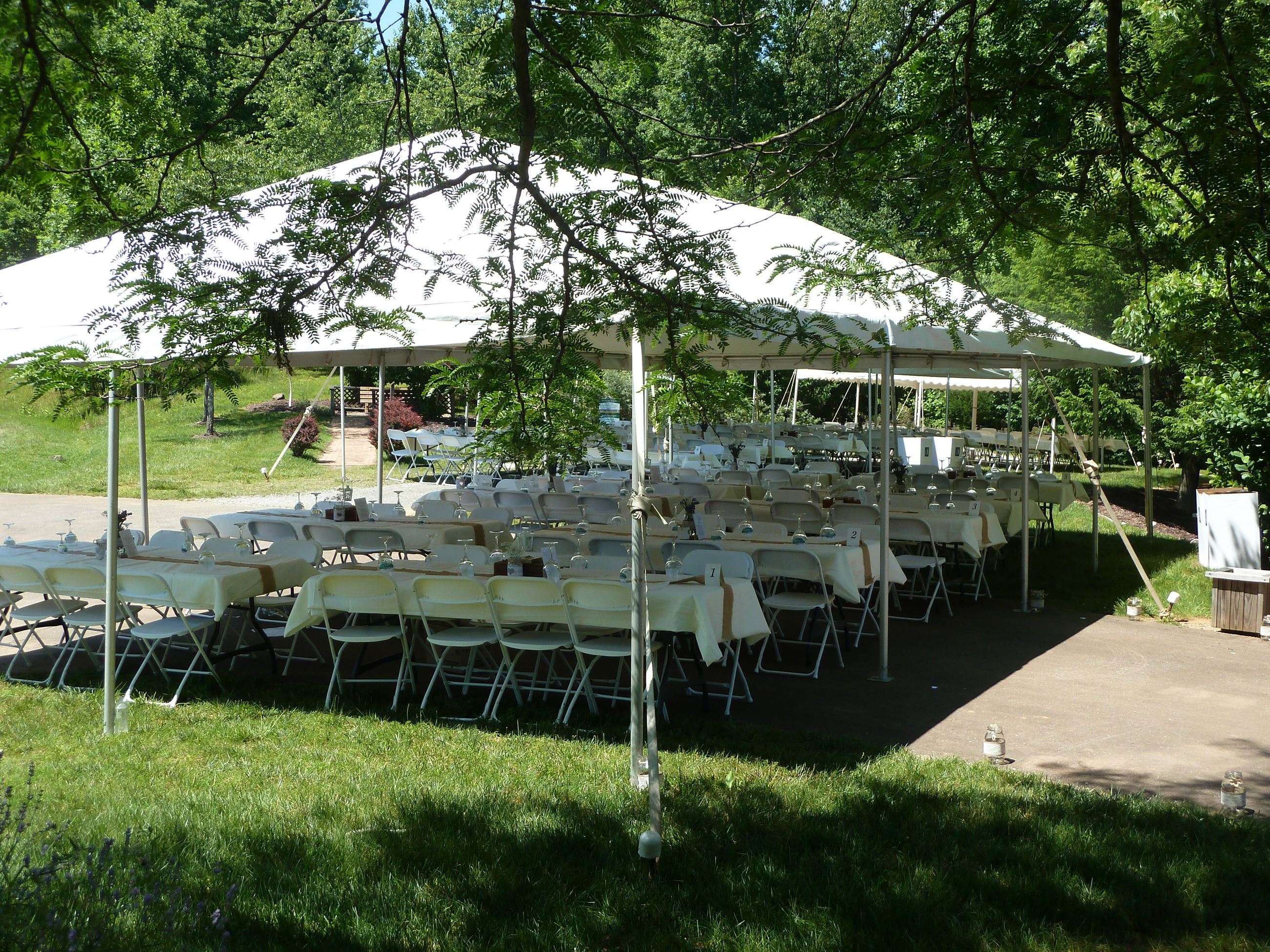 18 Reception Tent Outside Arthur Taubman