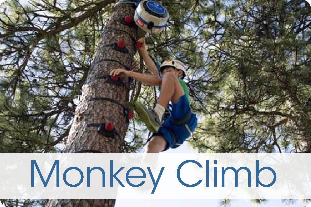 MonkeyClimb
