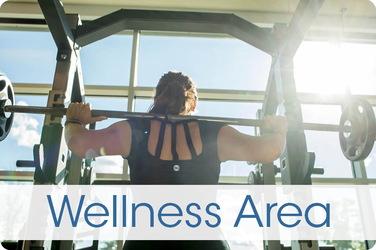 WellnessArea
